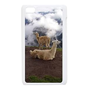 I Want Your Candy Funny Mobile Cell Phone Case Samsung Galaxy S5 Mini White
