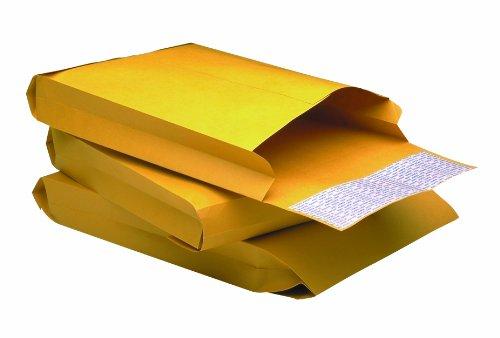 Quality Park Open End Expansion Envelopes, 12 x 15 x 3 Inches, Redi-Strip Closure, Box of 100 (E9090)