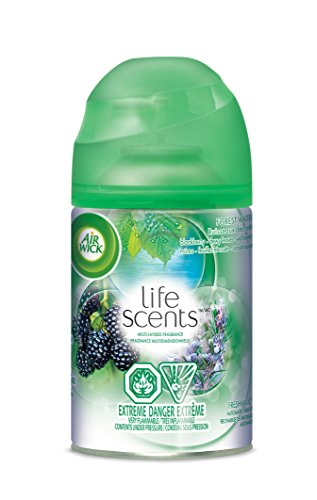 Air Wick Air Freshener, Freshmatic Refill, Forest Waters, 1 Count