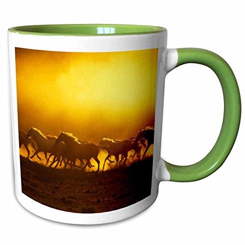3dRose Danita Delimont - Horses - Oregon, Wild Kiger mustang horse kicking up dust - US38 BJA0029 - Jaynes Gallery - 11oz Two-Tone Green Mug (Kiger Mustang Horse)