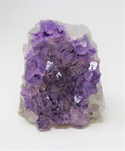 Rainbowrecords239 Medium Natural Amethyst Quartz Crystal Cluster from Brazil, Cut Base - 5 oz to 8 oz by