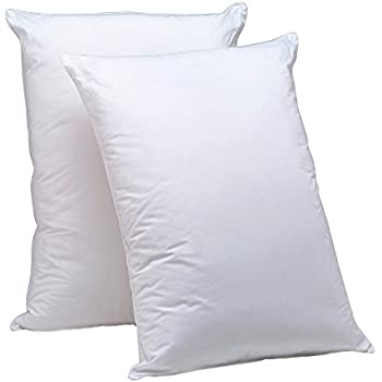 Amazon Com Aller Ease Hot Water Washable Allergy Pillow