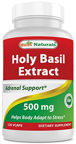 Best Naturals Holy Basil Stress Management 500 mg 120 Veggie Capsules