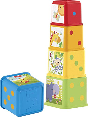 Fisher-Price CDC52 Stack & Explore Blocks