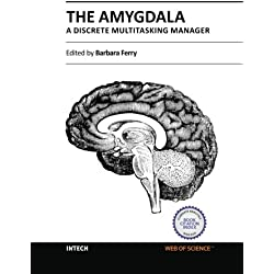 The Amygdala - A Discrete Multitasking Manager