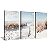 Hardy Gallery Beach Path Picture Coastal Artwork: Seaside Boardwalk Painting Art Print on Canvas for Living Room (34