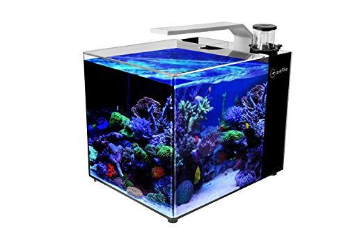 cube reef tank - 4