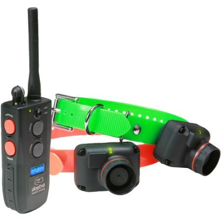 Dogtra Train and Beep Dog System