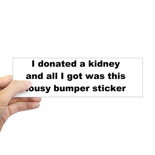 CafePress - Sticker (Bumper) Lousy Bumper Sticker - 10