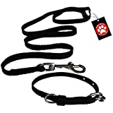 Pawzone Puppy Black Leash With Collar Set - Small