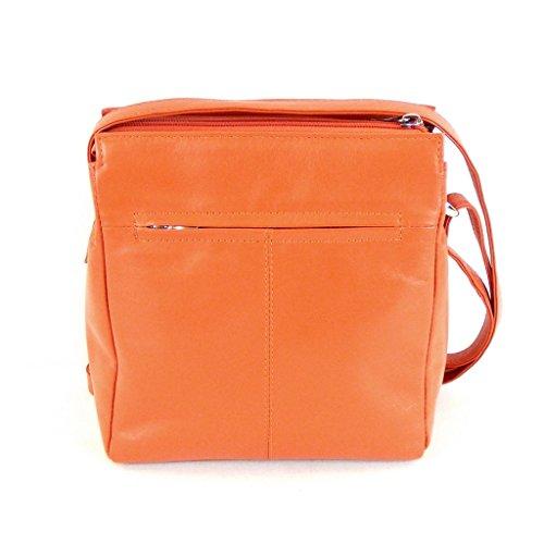 Pavini Damen Tasche Crossovertasche Classics Leder orange 13441 Handyfach