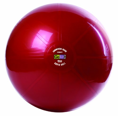 GoFit 2500lb. Commercial Graded Exercise/Stability Ball - 65cm by GoFit