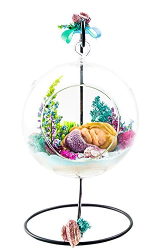 Terrarium Kit Sleeping Mermaid Mermaid Series Complete Terrarium Gift Set with Stand 6 Glass Globe Terrarium Container Nautical Crush Trading TM Plus Free Nautical eBook by Joseph Rains