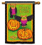 Trick or Treat Owls Halloween House Flag