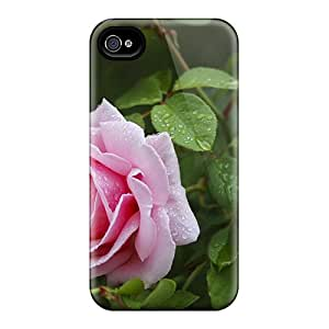 Iphone 6 Cases Covers - Slim Fit Protector Shock Absorbent Cases (a Rose After The Rain)