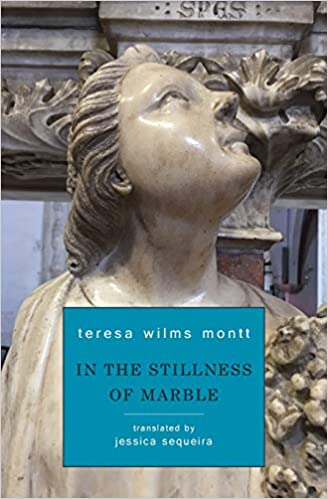 Image result for Teresa Wilms Montt, In the Stillness of Marble