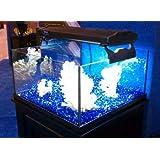 Deep Blue Professional ADB13530 30 Gallon Rimless Mini Frag For Aquarium 24 By