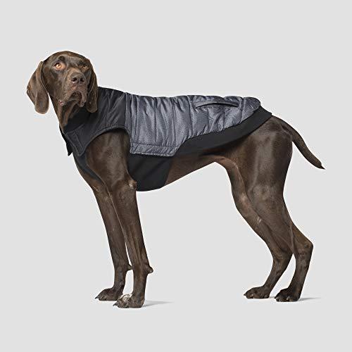Canada Pooch | Summit Stretch Dog Vest | Water-Resistant Dog Puffer Vest, Grey Pepper, Size 14 (Vest Canada Pooch)