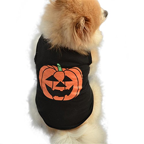 Puppy Halloween Pumpkin Print Vest, Howstar Small Dog Outfit Cute Shirt Customs (M, Black) - Cute Dog Halloween Outfits