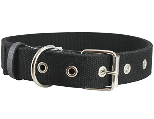 Cotton Web Dog Collar 3/4