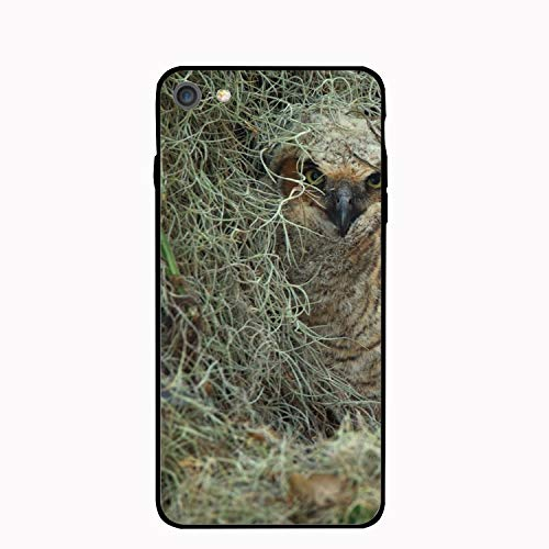 Virginia Owl Chicks Birds Floral Print PC Cellphone case for iPhone 6/6s
