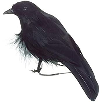 brand new lot of 9 halloween black feathered crows ravens props decor decorations birds