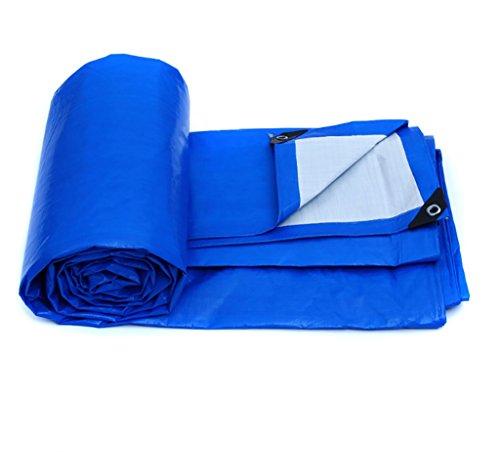 喉頭常習的風雨布厚い断熱テント防水布雨布防水布厚いプラスチックシート様々なサイズのパンチングロープキャンバス (サイズ さいず : 8*6m)