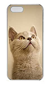 iPhone 5 5S Case Small cat PC Custom iPhone 5 5S Case Cover Transparent
