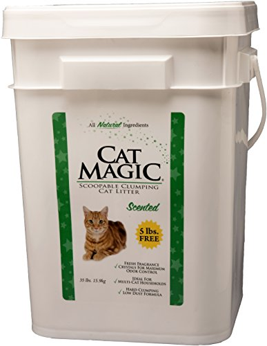 Cat Magic Scented Clumping 35 Pound
