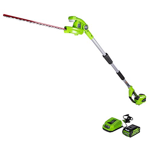 GreenWorks PH40B210 G-MAX 40V 22-Inch Cordless Pole Hedge Tr
