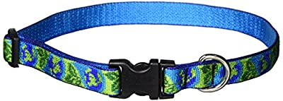 Lupine 3/4 inch Earth Day Adjustable Dog Collar
