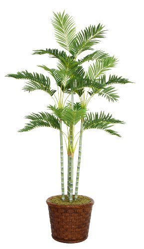 Laura Ashley 73 Inch Tall Palm Tree In 17 Inch Fiberstone Planter By