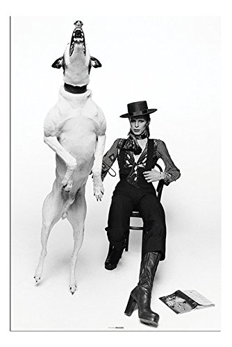 David Bowie Diamond Dogs Poster Gloss Laminated - 91.5 x 61cms (36 x 24 Inches)