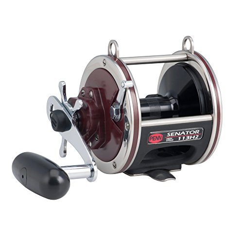 PENN Special Senator Star - International Baitcast Penn Reel