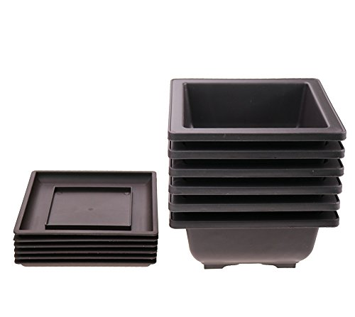 6PCS/PACK Beautiful Retro Style Plastic Square Pot /Flower Bonsai Plants Growing Pots /Maceta Cuadrada Simulational Purple Sands Pots With Tray Square ()