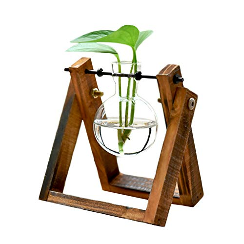 KYMAKE Clear Glass Planter Bulb Vase with Vintage Wooden Stand - High Borosilicate - Handmade - Best Choice Decorating Your Life. (1 Terrarium)