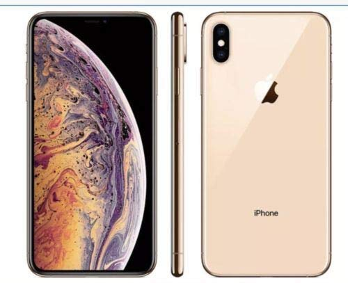Apple iPhone XS Fully Unlocked 256GB Gold (Renewed)