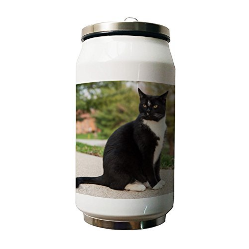 Kdnsgfds Cute Black Cat Double Vacuum Insulated Stainless St