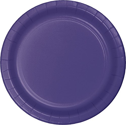 Creative Converting Touch of Color Paper Lunch Plates, 24-Count, -