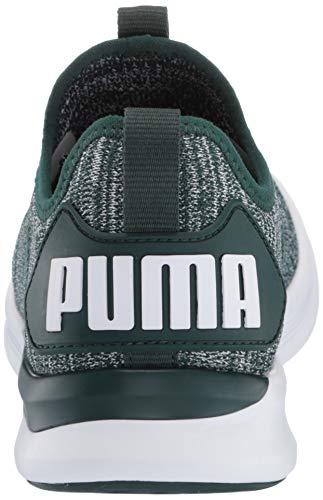 ponderosa Flash Wn's Puma Ignite Sport Scape Donna Outdoor Verde Pine Per Evoknit vqtOwt5