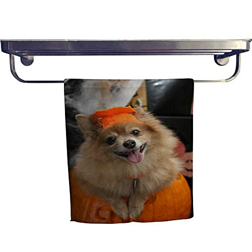 Leigh home Pool Gym Towels, Halloween Costume Puppy,Good Ideal for The Kid's Room, a Guest Room W 12