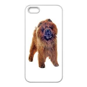 iPhone 5 5s Cell Phone Case White Basset Hound hlzr