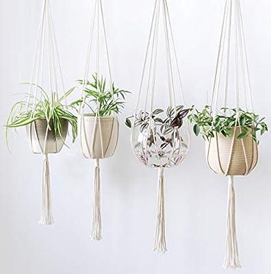 Amazon.com: Colgador de plantas, soporte de encaje para ...