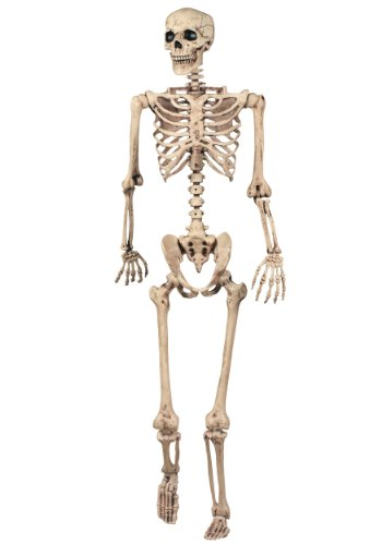 Halloween Skeletons (Crazy Bonez Pose-N-Stay Skeleton)