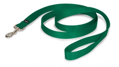 Premier Leash, 1 by 6-Feet, Green, My Pet Supplies