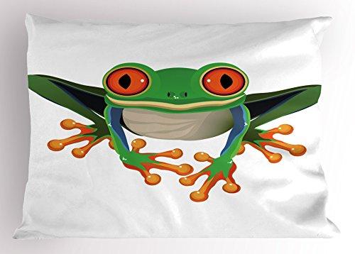 Big Eyed Tree Frog Care