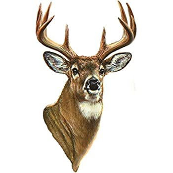 Buck Head Vinyl Wall Art Decal - ClipArt Best - ClipArt ...
