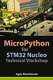 MicroPython for STM32 Nucleo Technical Workshop