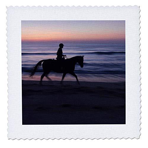 3dRose Danita Delimont - Horses - Morning ride, Vilano Beach, Florida - 25x25 inch quilt square (qs_314775_10)