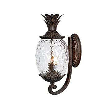 Acclaim 7501bc lanai collection 2 light wall mount outdoor light acclaim 7501bc lanai collection 2 light wall mount outdoor light fixture black coral aloadofball Gallery